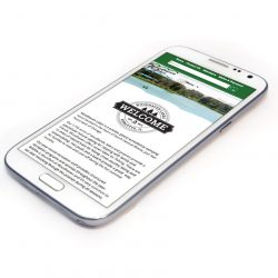 Responsive website on a phone